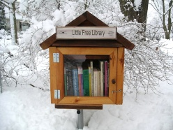 littlefreelibrary01